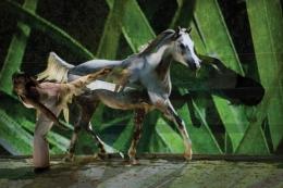 """""""Tanzende Pferde - Spiegelungen im Raum"""""""